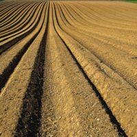Soil and Sludge